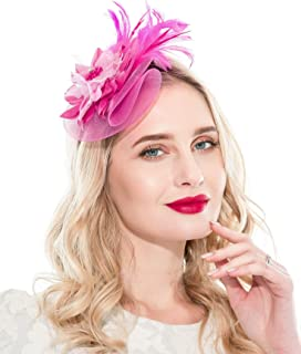 Fascinators Headband for Women Tea Party Hat Kentucky Derby Wedding Flower Mesh Feathers Hair Clip
