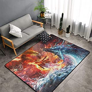 NiYoung Bedroom Living Room Kitchen Big Size Area Rugs Home Art - Fire Phoenix Bird Vs Water Dargon Art Floor Mat Doormats Quick Dry Spa Bathroom Floor Mats Exercise Mat Throw Rugs Carpet