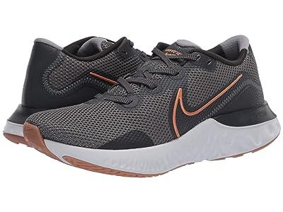 Nike Renew Run (Iron Grey/Metallic Copper/Dark Smoke Grey) Men