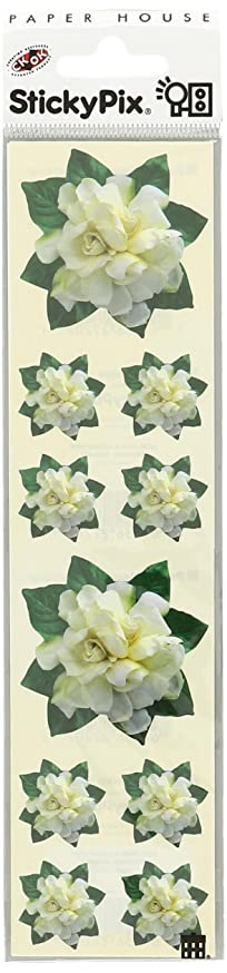 Paper House Productions ST-2105E Photo Real Stickypix Stickers, 2-Inch by 4-Inch, Gardenia (6-Pack)