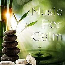 Best relaxing river music Reviews