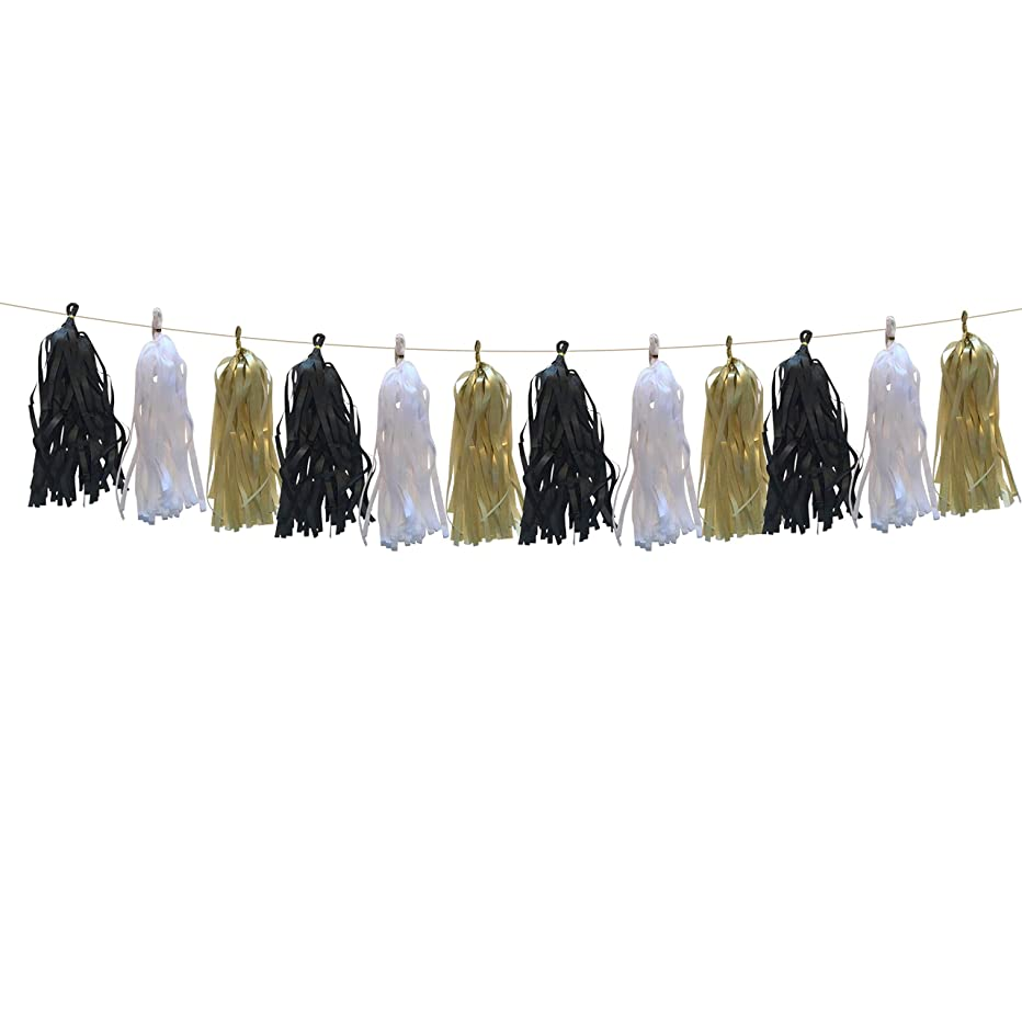 DIY Tissue Tassel Banner in Black, Gold, and White by PinkFish Shop (15 Pcs) Bunting for Graduation Birthday Party Decoration Supplies Bachelorette Party