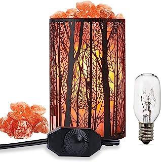 Salt Lamps, Natural Himalayan Salt Lamp, Forest Salt Lamp, Salt Night Lights, Salt Crystal Light with Retro Metal Basket Lamp and Extra 25W Lamp Bulbs