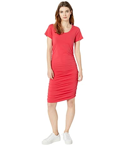 bobi Los Angeles Short Sleeve Shirred Dress in Modal Jersey (Chili) Women