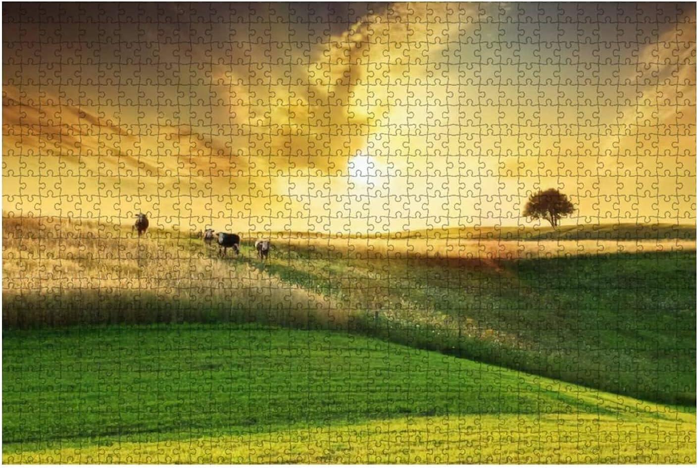 1000 Award Manufacturer OFFicial shop Pieces-Golden Sunset Over Landscape Idyllic Farmland Wooden