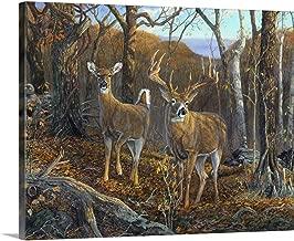 GREATBIGCANVAS Gallery-Wrapped Canvas Oak Ridge Trophy Deer by Terry Doughty 30