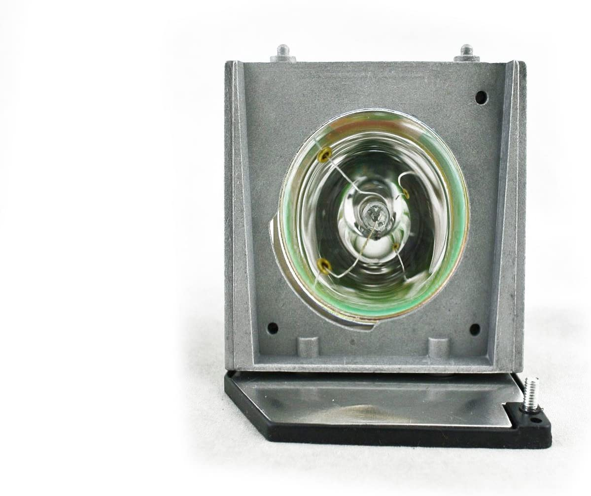 V7 Nippon regular agency DT01171-V7-1N Replacement Purchase Lamp DT01171 for