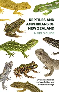 new zealand reptiles and amphibians