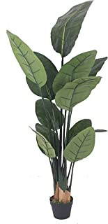 AMERIQUE 6 Feet Bird of Paradise Artificial Tree Silk Plant with Giant Leaves, UV Protection, Nursery Plastic Pot, Feel Real Technology, Super Quality, Green