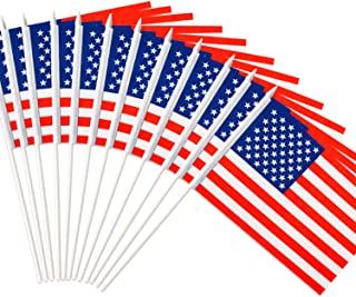 Best Anley USA United States Mini Flag 12 Pack - Hand Held Small Miniature American US Flags on Stick - Fade Resistant & Vivid Colors - 5x8 Inch with Solid Pole & Spear Top Review