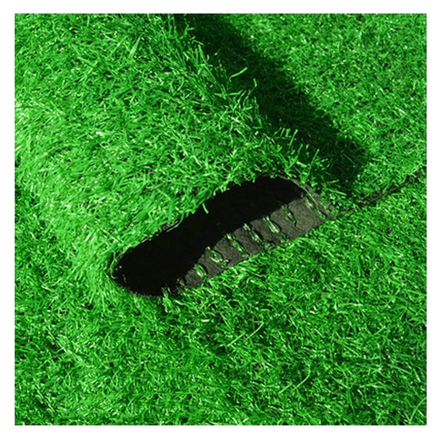 資格情報参加者配管YNGJUEN 人工芝芝生高25 mm高密度休日芝生芝生庭ペット犬パッド庭ペット屋外装飾 (Size : 2x7m)