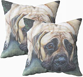 Musesh Pack of 2 american mastiff fine art painting Cushions Case Throw Pillow Cover For Sofa Home Decorative Pillowslip Gift Ideas Household Pillowcase Zippered Pillow Covers 16x16Inch