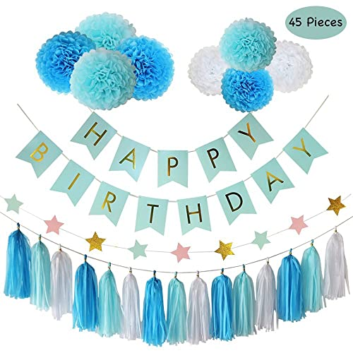 Parlie Blue Birthday Party Decorations Supplies 45pcs Decors And