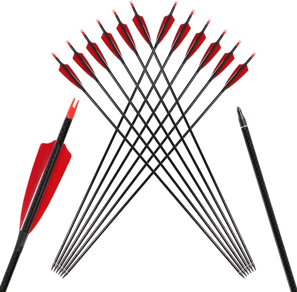 TOPARCHERY 6pcs 32 Popular Translated brand Inch Carbon Arrows Archery Vanes for Natural