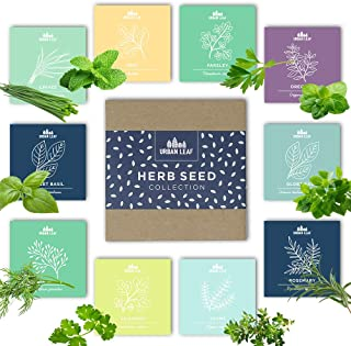 Herb Garden Seeds Kit for Planting | Non GMO | 10 Herb Seed Packets for Gardening incl Basil Mint Cilantro Chives | Indoor...