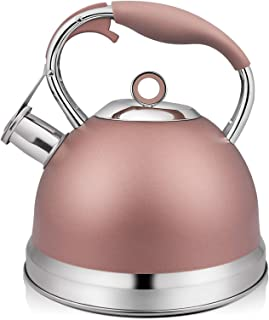 RETTBERG Tea Kettle for Stove Top,2 Quart Food Grade Stainless Steel Whistling TeaPot With Anti-hot silicone handle (Champ...