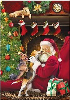 Square DIY 5D kerst Diamond Painting Schilderen op nummer Kit Kerstman en Hond 5d Vierkante Diamond Art Rhinestone Borduur...