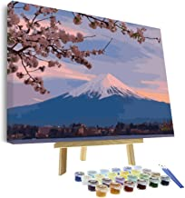 VIGEIYA DIY Paint by Numbers for Adults Include Framed Canvas and Wooden Easel with Brushes and Acrylic Pigment 16x20inch ...