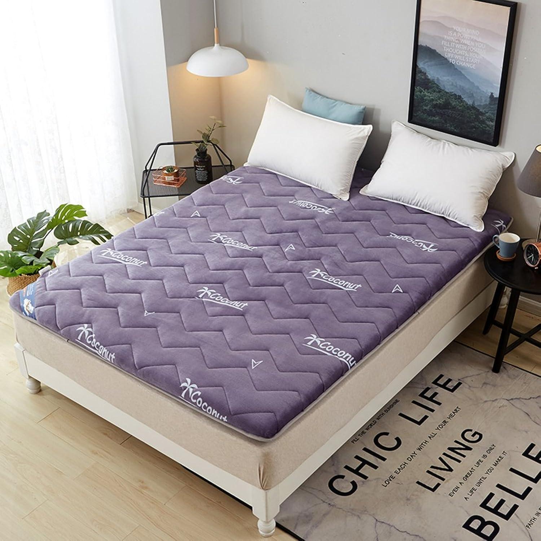 Flannel Thicken with Woolen Floor Matt mat Mattress,Mattress pad Thicken [Coral] Anti-skidding Waterproof Dust mite Predection-B 100x200cm(39x79inch)