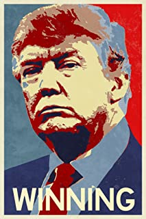 President Donald Trump Winning Campaign Poster 24x36 inch