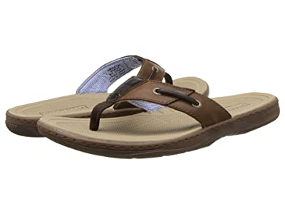 Sperry Baitfish Thong (Dark Brown) Men