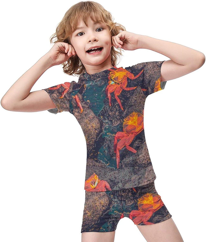 Yiaoflying Kids Boys 2 Piece Swim Set - Crabs Sea Stones Rashguard Swimsuit Trunks