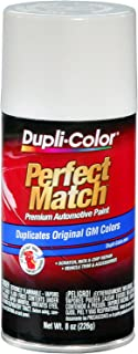 Best dupli color auto paint spray can Reviews