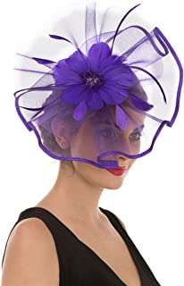 ece9eea3 SAFERIN Fascinator Hat Feather Mesh Net Veil Party Hat Flower Derby Hat  with Clip and Hairband