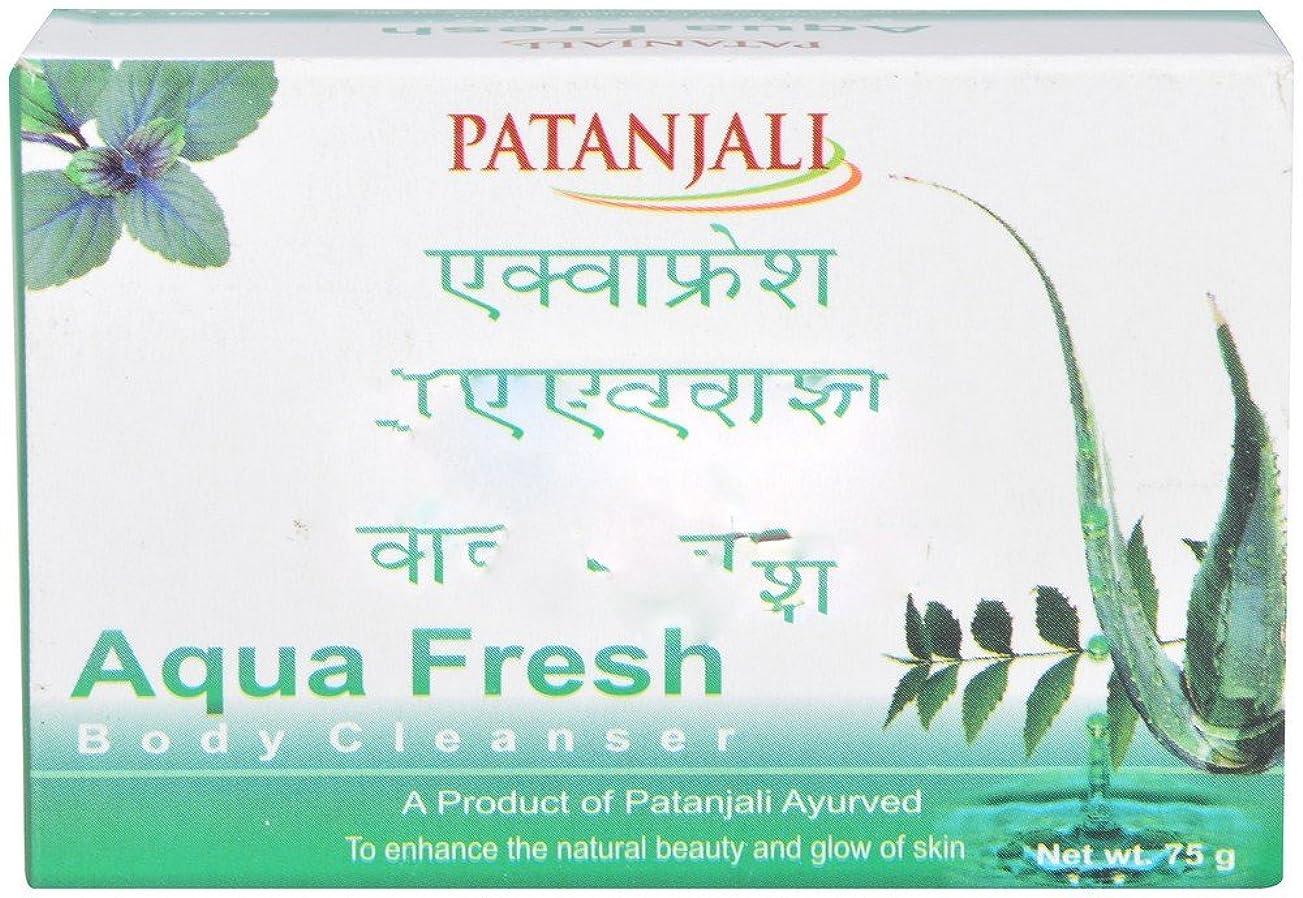 日食うそつき策定するPatanjali Aquafresh Body Cleanser, 75g