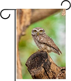 Garden Flag Spotted Owlet 12×18 Inch Double Sided Design Decorative Yard Banner Garden Flag Holiday Flag for Party Home Ou...