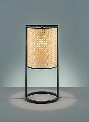Fischer & Honsel 50345 Lampe de Table, Métal, Noir, 26 x 26 x 56 cm (LxBxH)