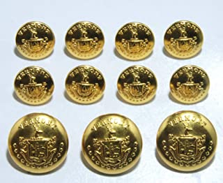 Vermont State Seal Blazer Buttons Gold Plated Sport Coat 11 pc Button Set Montpelier