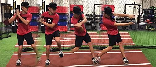 Hitting Disk Baseball and Softball Swing Training Aids