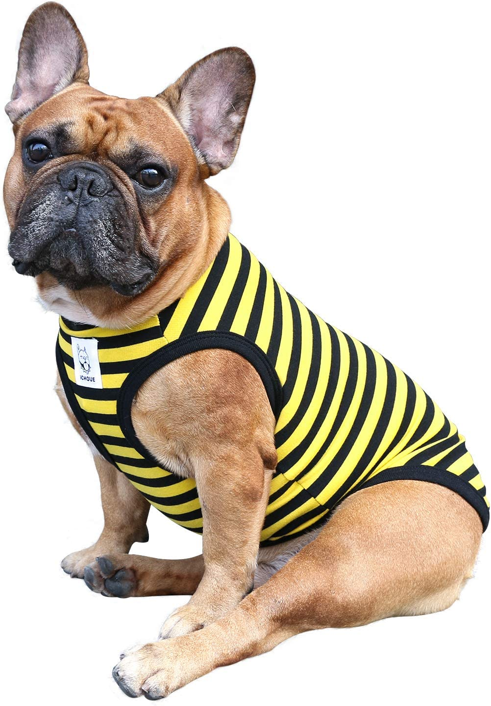 iChoue Directly managed store Striped Dog Fees free T Shirts Top Clothes Vest Tank