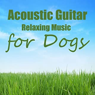 Acoustic Guitar: Relaxation Music For Dogs
