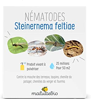 Maluttebio Nematodes SF - Anti Moscas de Tierra, taupinos, orugas ...