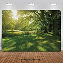 10x10Ft Vinyl Green Backdrop for Photography,Summer Park in Hamburg Germany Trees Sunlight Forest Nature Theme Scenic Outdoors Picture Background Newborn Baby Photoshoot Portrait Studio Props Birthday