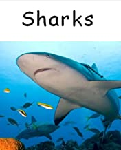 Sharks: World classic picture book recommendation (Traditional Chinese Edition)