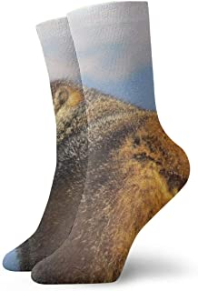 Calcetines deportivos deportivos para hombre, marrones, castor, marmota, gruesos, divertidos y divertidos, calcetines de poliéster, 30 cm
