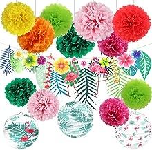 Best accordion paper flowers Reviews