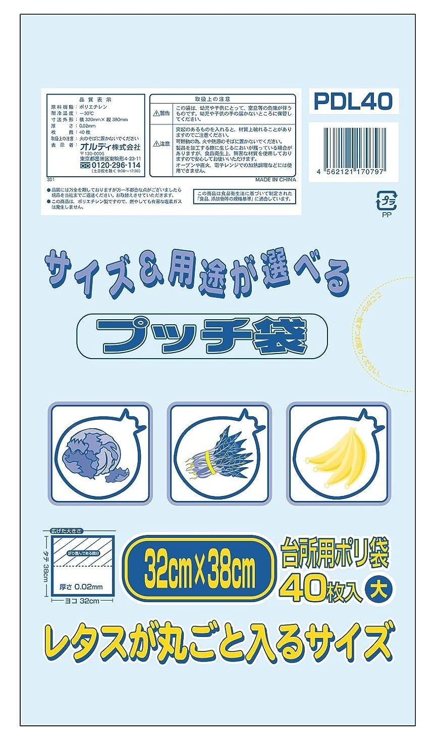 ピンポイント後世伝統的オルディ キッチン ポリ袋 透明 横32×縦38cm 厚み0.02mm 大 プッチ袋 食品保存 PDL40 40枚入