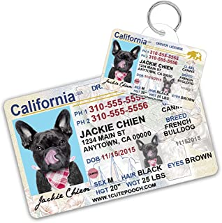 pet drivers license id