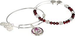Alex and Ani - Art Infusion Bracelet Set, Fortune's Favor