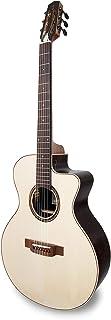 APC instruments EA Luthier CROS CW Electric-Acoustic Guitar