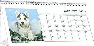 Best puppy desk calendar 2018 Reviews