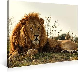 Best majestic lion canvas Reviews