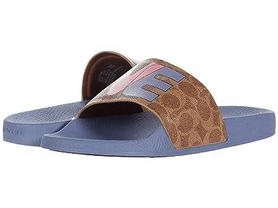 COACH Udele Slide (Tan/Light Blue PVC) Women