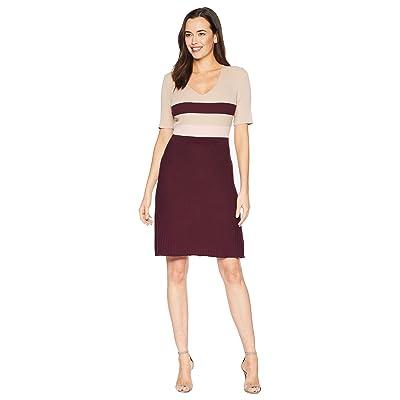 Ellen Tracy Short Sleeve Plated Stitch Dress (Parchment Combo) Women