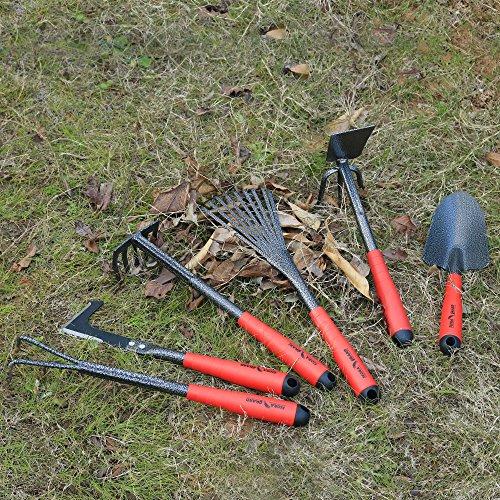 FLORA GUARD 6 Piece Garden Tool Sets - Including Trowel,5-Teeth rake,9-Teeth Leaf rake,Double Hoe 3 prongs, Cultivator, Weeder, Gardening Hand Tools with High Carbon Steel Heads