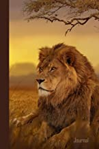 Journal: African Lion Leo Diary & Writing Notebook | Daily Diaries for Journalists & Writers | Use for Note Taking | Write about your Life & Interests